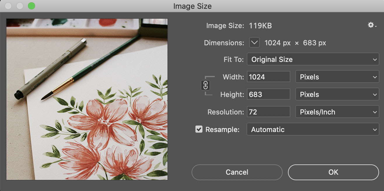 Image size dialog box in Photopshop