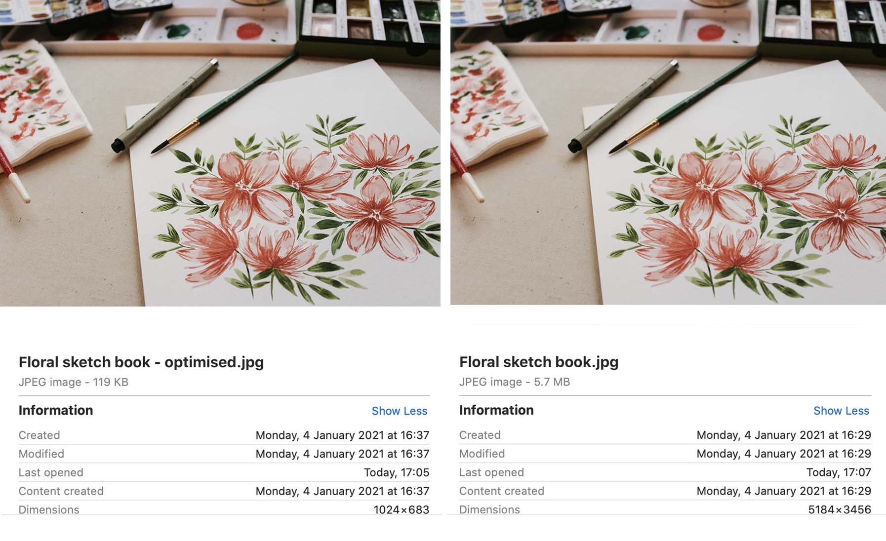 Image comparison showing the image information on an optimised and unoptimised image.