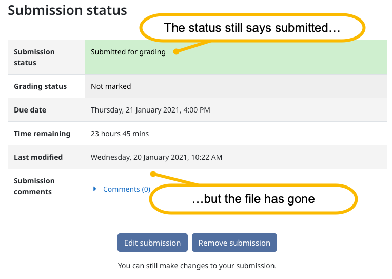 Screenshot showing the submission status as submitted and no submitted files