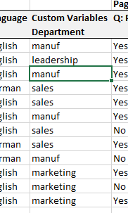 Custom variable data in an Excel spreadsheet export