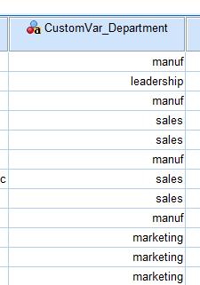 Custom variable data in SPSS