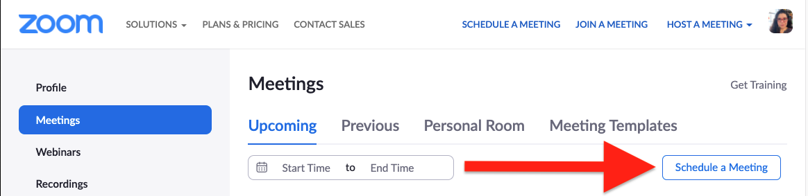 in Zoom, click on schedule a meeting
