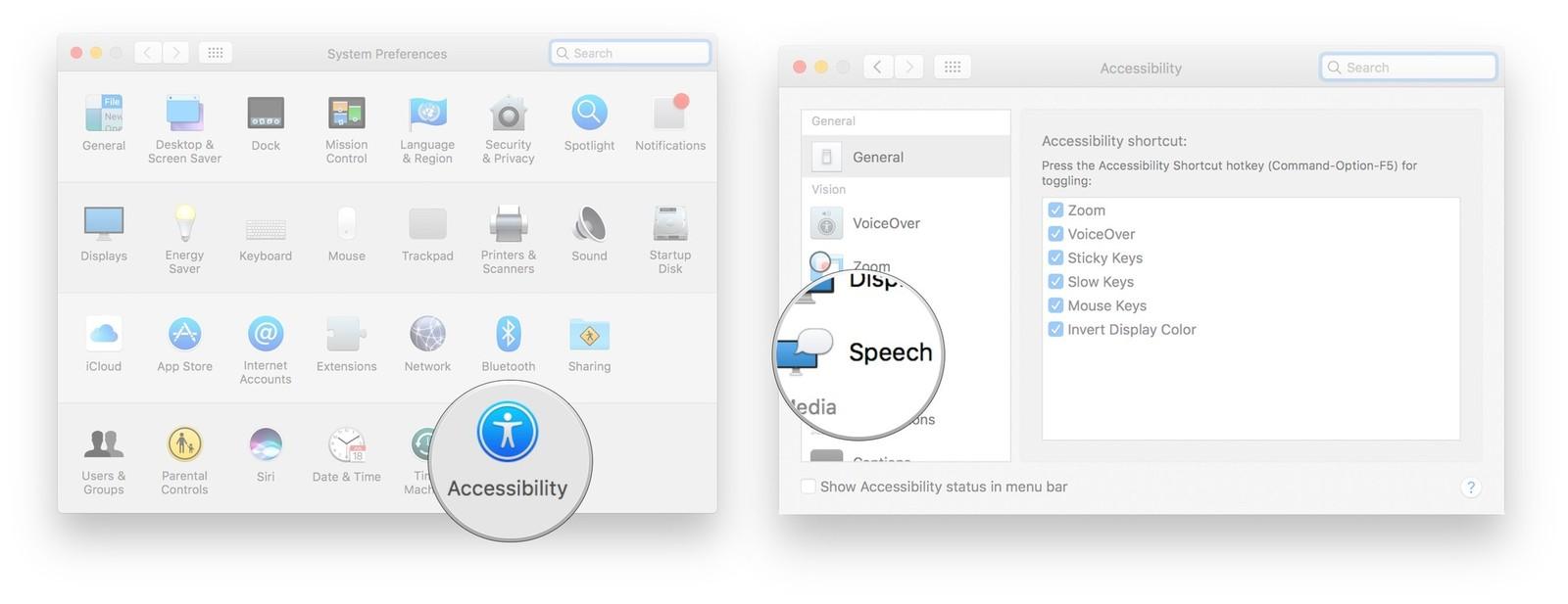 Click Accessibility, click Speech