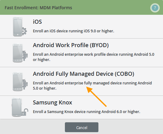 Android Fully Managed Device auswählen