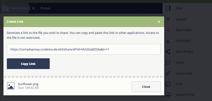 create link to a file (web app)