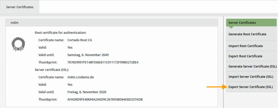 Server-Zertifikat exportieren