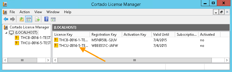 License Manager with demo license keys for Cortado Server (user license for max. 5 users)