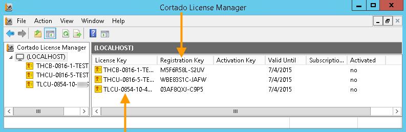Licenses with registration keys (example for <em>Cortado Server</em>)