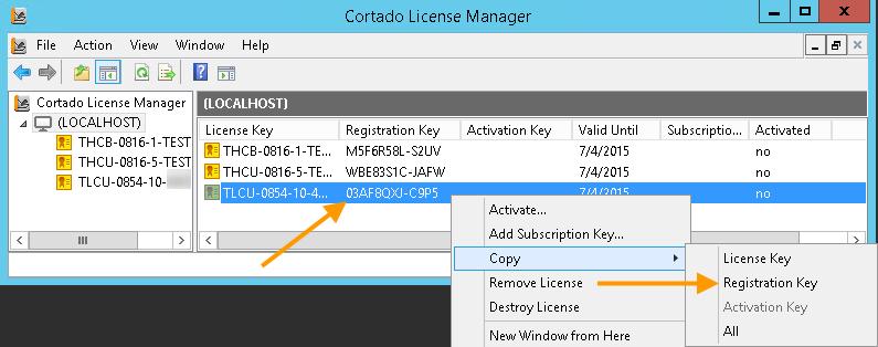 Registrierungsschlüssel in die Zwischenablage kopieren