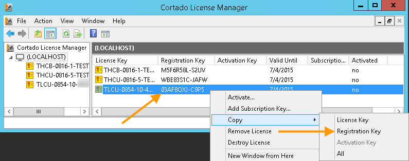 Copy the Registration key to the clipboard