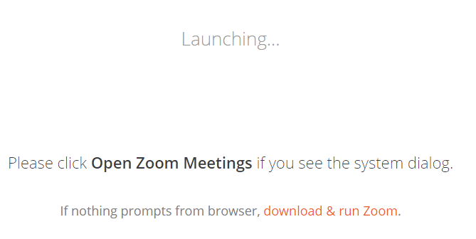 "Zoom ""Launching"" window"