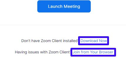 Download Zoom or Join from Your browser