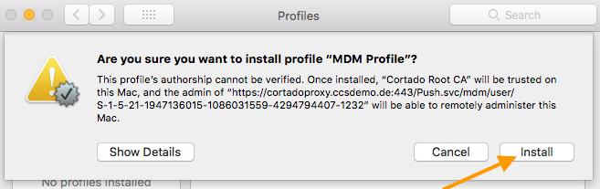 MDM-Profil installieren