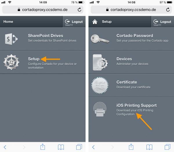 Setup und iOS Printing Support auswählen
