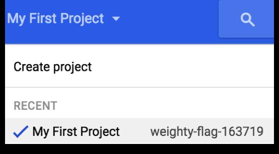 1 google dns import