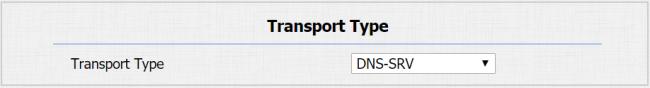 DNS type