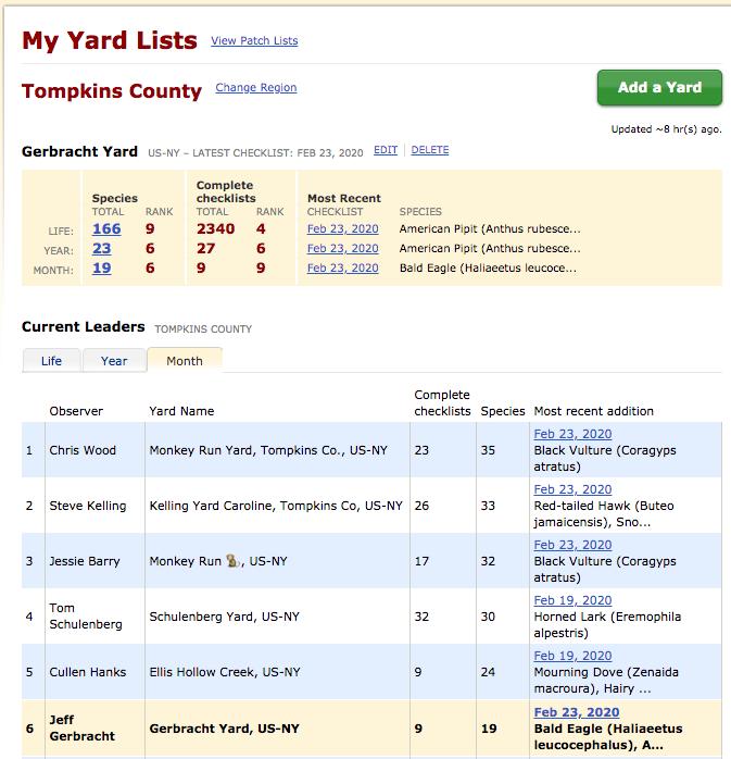eBird Yard Lists