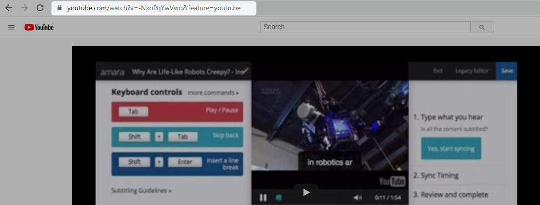 Screenshot of YouTube page with video URL highlighted