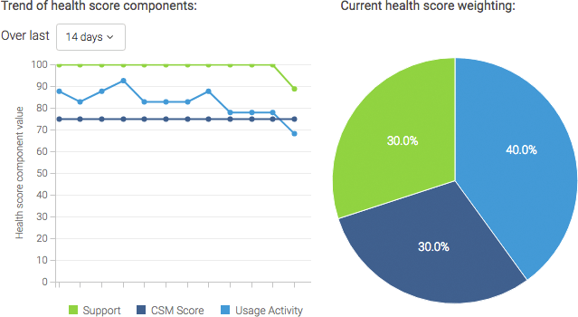 Customer Health Score Example
