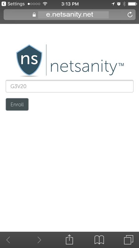 e.netsanity.net.png