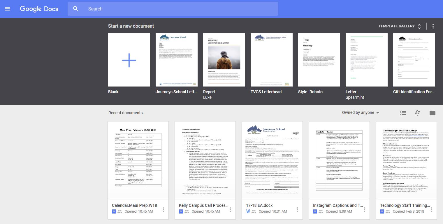 does google docs work offline