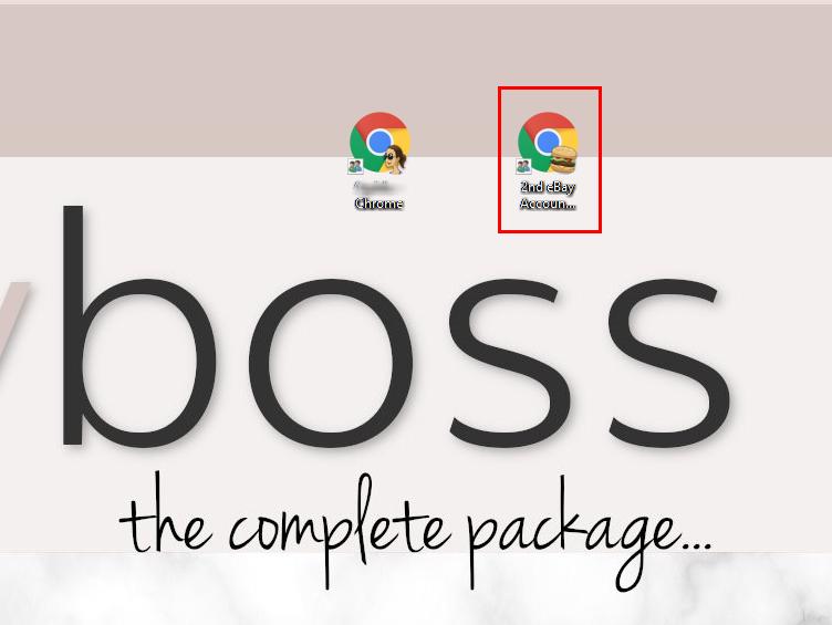 Ebay Icon On Desktop