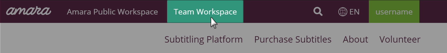 Top navigation on amara with team workspace highlighted