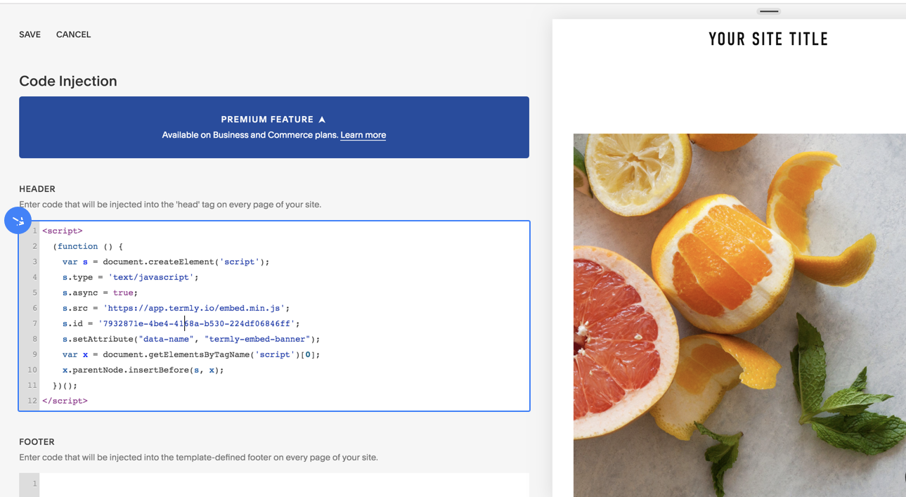 Insert Termly code snippet on Squarespace