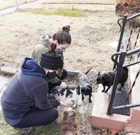 Gateway Pet Guardians Outreach