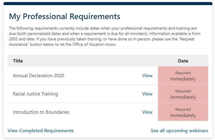 Screen shot of Professional Requirements