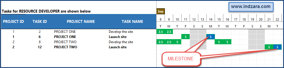 Project Planner Advanced Excel Template - Project Milestones