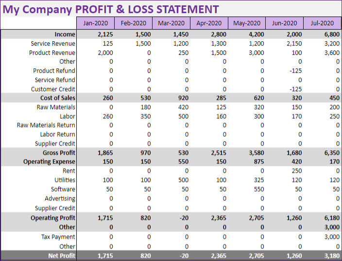 Profit and Loss or Income Statement