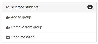 group_more_students_alternatives.JPG