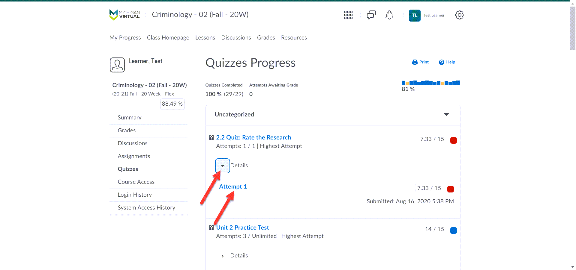The Quizzes Progress page is shown displaying a table of quizzes/tests within the course. Each item has a score with the Details drop-down. The first quiz details option is expanded to show attempt 1. An arrow points to the details drop-down and to the linked attempt.