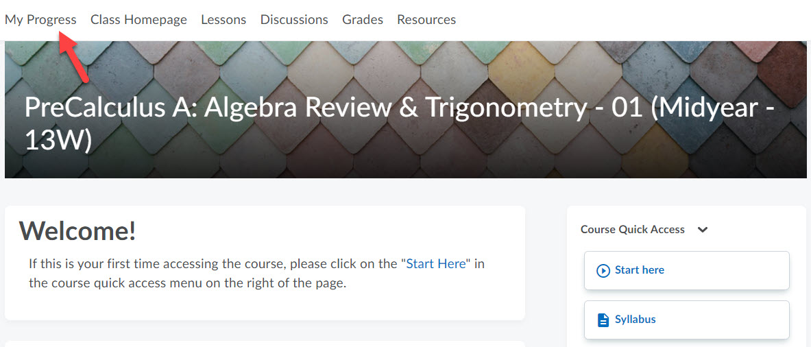 The course homepage is shown with an arrow pointing to My Progress in the top navbar.
