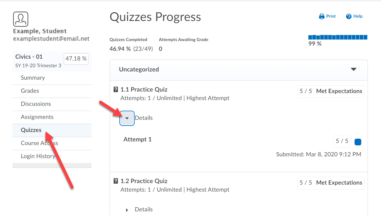 Quizzes Progress page showing quiz names and scores. Arrows point to the Quizzes option on the left menu and to the Details drop-down.