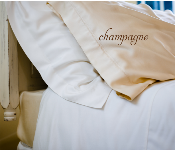 bamboe-dekbedovertrek-champagne.png
