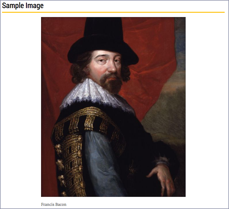 screenshot of the image on the page as it will appear to the end users centered and showing the caption