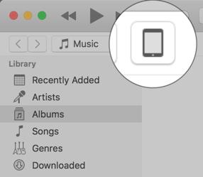 כפתור הiPad בתוכנת iTunes, מוקף בעיגול ומוגדל