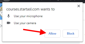 Click Allow when your browser asks for camera and microphone permissions.