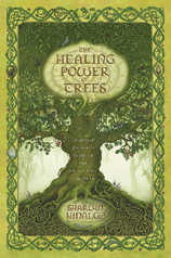 Healing Power of Trees