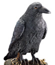Raven with Key