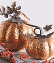 Coppery Pumpkins, set of 2
