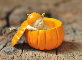 Fairy Baby in Pumpkin