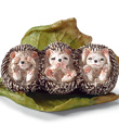 See-No-Evil Hedgehogs
