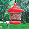 Bird Grub Feeder
