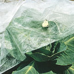 Super-Lite Plant Insect Barrier - 8' x 20' Barrier