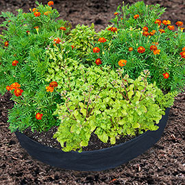 Grow Tub® Circular Raised Garden Bed