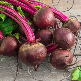 Perfected Detroit Dark Red Beet