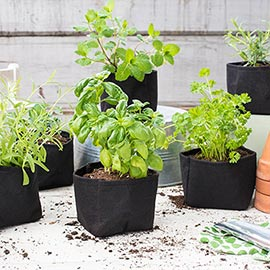 Grow Tub<sup>®</sup> Herb/Transplant Containers